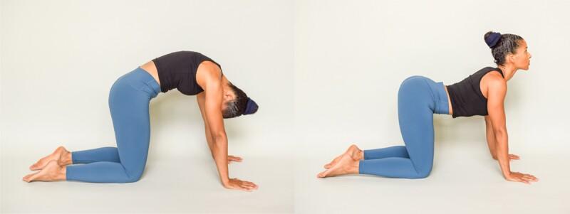 Yoga pose: cat cow