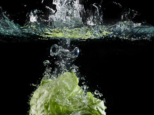 Lettuce falling into a water on a black background