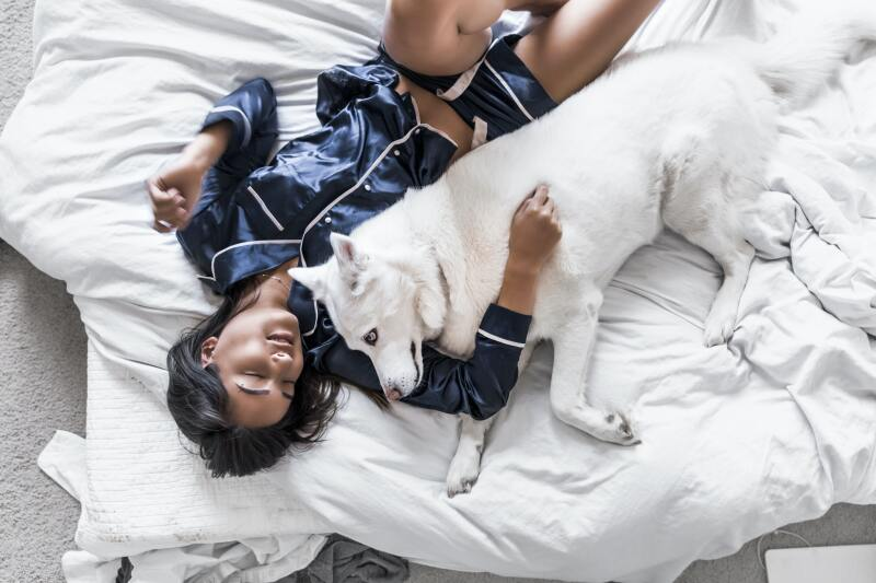 Woman in bed with a white dog